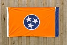 Tennessee  / All the best of Big Orange Country!   / by Sherrill French