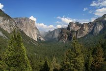 U.S.A.  NATIONAL PARKS  & FORESTS / by Cindy Santonas