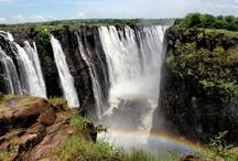 We Love Africa / by Bush Breaks