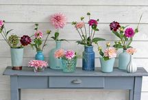 Flowers & Garden tips / Easy tips and tricks for gardeners like flowerbulb planting, dahlias wintering and many more.