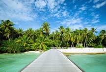 Lieux que je veux visiter / travel