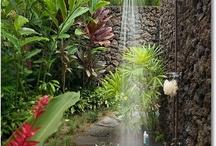 Inspiration for Gardening / #gardening #ideas #flowers #trees
