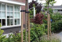 Tuinen / Mooie tuinen. Ideetjes voor ons?