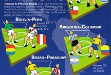 Infografías / Información variada publicada a través de gráficos con contenidos que den servicio.