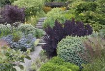 Gardens / by Isabelle Du Soleil
