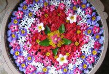 .flower mandalas.