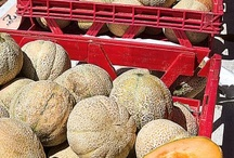 Rocky Ford in the News / by RockyFord Cantaloupe