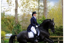 Passion for dressage