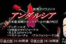 森の響 コンサート2016年3月①