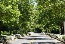 West Linn / Located south of Portland and neighboring Lake Oswego, West Linn is home to just over 25,000 residents.  Top rated schools and low crime rate make this area a top pick for families.