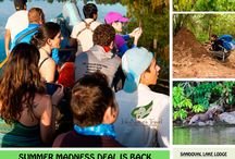2017 Summer Madness in Tambopata / Special Deals for Tambopata Tours Travel dates 05 Dec 20167 until 25 April 2017