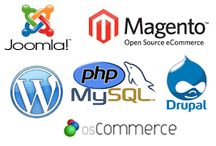 open source Web Development /  It's an open source cross-platform runtime environment for developing server-side Web applications