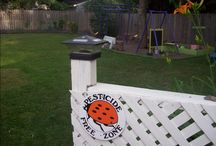 Green Acres / Budget and eco-friendly ideas for your secret garden.