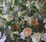 Wedding Flower ideas / by Sam Crowley