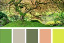oh.colour