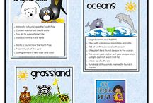 Great Lesson Ideas / by Teresa Green