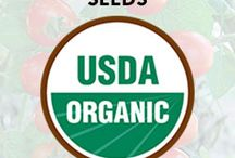 Buy Heirloom Organic Seeds