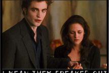 Twilight / When you spell Twiglit instead...