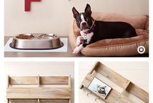 Dogs Organized / Modern Dogs Need Furniture