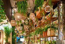 ACCESSOIRES_planten&bloemen / Planten & Bloemen zijn echte sfeermakers in een huis. Je kunt er op verschillende manieren met spelen.