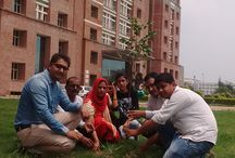 Go Green initiative / Sharda University goes green, launches 'Go Green' initiative.