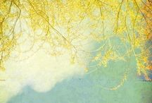 Amarelo...amo!!!