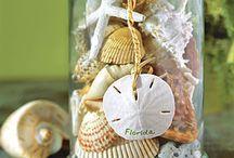 Decor and shells....