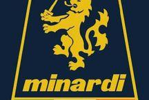 MINARDI  F1 TEAM