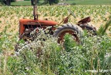 Farm Needs...