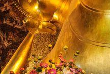 Asia Adventure Part 1 : Thailand