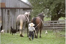 Amish  / A different way of life / by Debbie Cruse