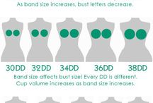 Bust sizes