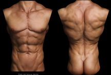 ZBrush Sculpting & Human Anatomy Reference
