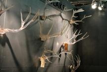 Lucite / by Hampton Hostess CG3 Interiors-Barbara Page Home