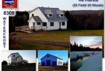 SOLD! | 290 Rt 212 Merrill Maine 04780 / 45 Acres of Maine Included With This New Cape Home, Barn, Greenhouse & Wood Shed / Storage Shed Property. On The Waterfront Too! $259,500! info@mooersrealty.com 207.532.6573