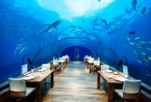 Unusual Restaurants / Unique and bizarre places round the world to dine