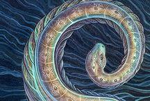 Spiral consciousness