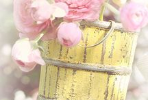 Pretty Shabby chic florals. / For florals displayed in the best of shabby chic.  / by Julie Mariner