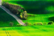 Green... Green