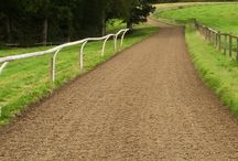 STABLES CANTER TRACK