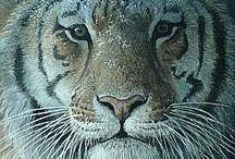 Artist - Robert Bateman