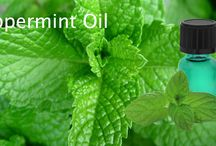 Mint Products