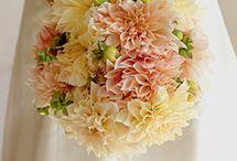 Wedding Ideas / by Cindy Brock