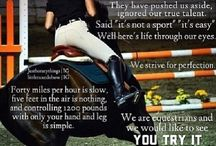 Horse Memes and Quotes