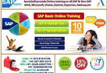 SAP BASIS Online Training at AcuteSoft