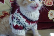 Cute :) <3