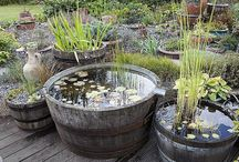 plantes et jardin
