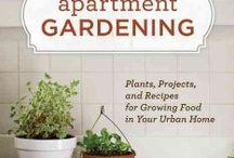 growing food / growing food - love for plants