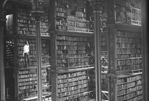 Libraries / by Sam Nightingale