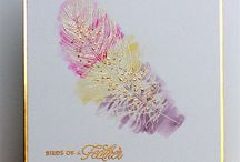 Cards - Birds and Feathers